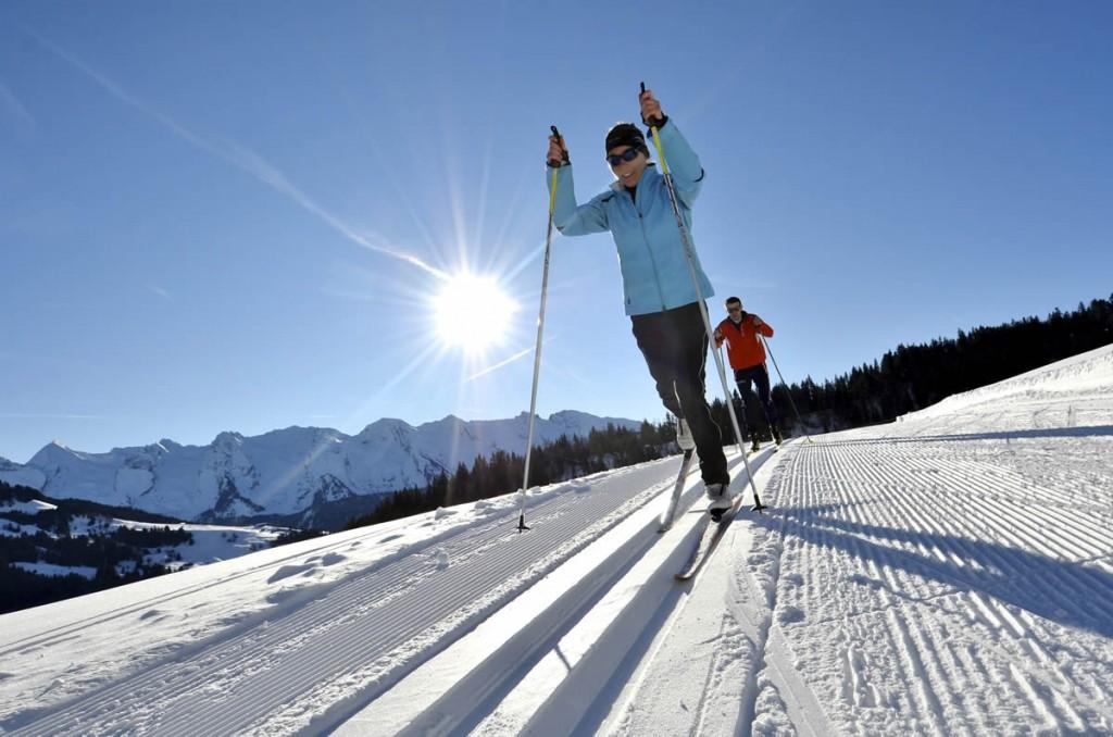 ski n2