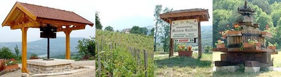 producteurs de vins de Seyssel