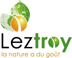 leztroy_restauration
